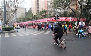 這條街,被中國食品代理網承包了!