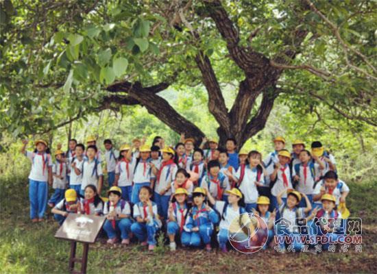 汇源助力青少年研学教育,帮助青少年健康成长