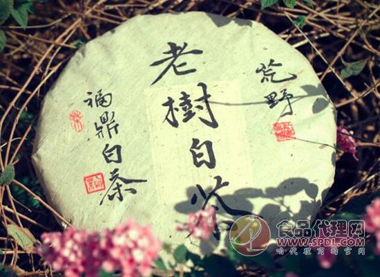 仁君福鼎寿眉茶叶
