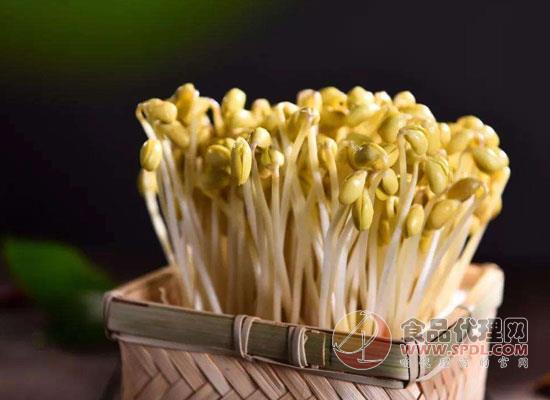 黄豆芽图片