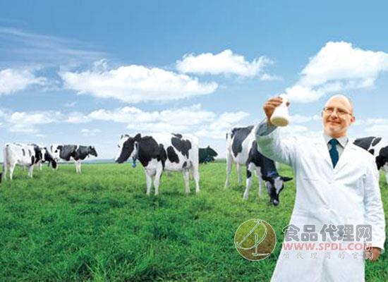国内乳业创新发展