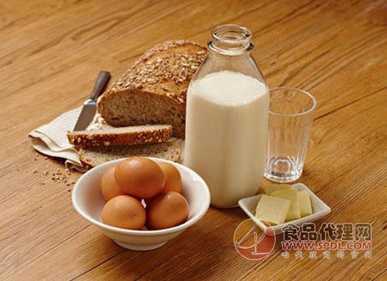 蛋白质对人体有什么重要作用