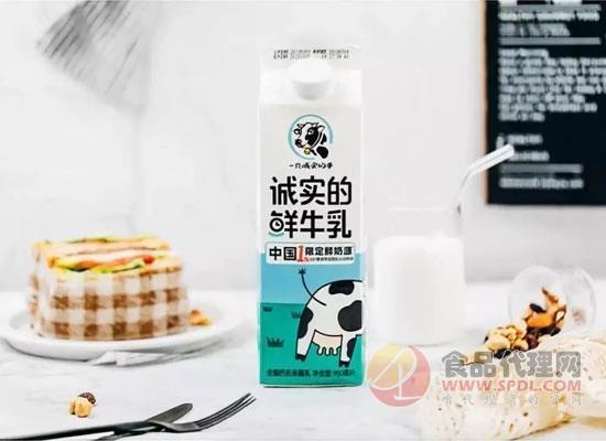 诚实的鲜牛乳