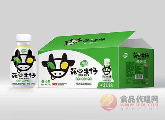 明畅芝士青瓜柠檬乳酸菌饮品
