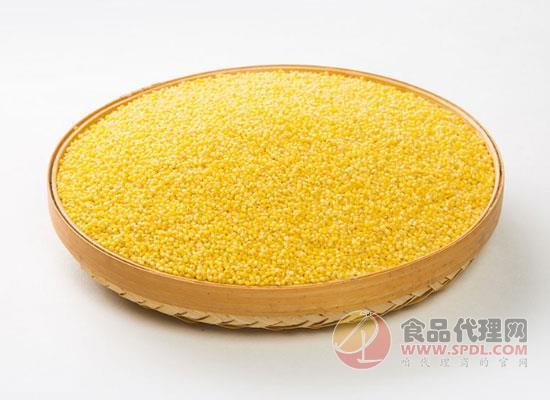 谷绿农品黄小米