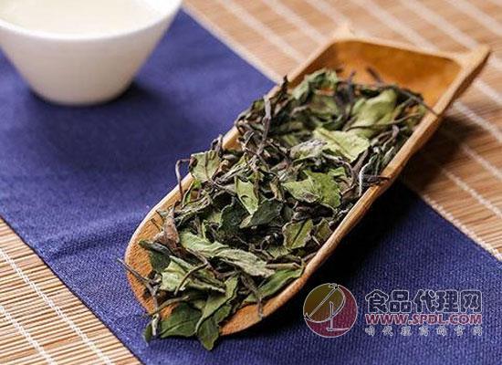 什么是白茶