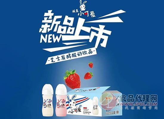 明畅芝士发酵酸奶饮品