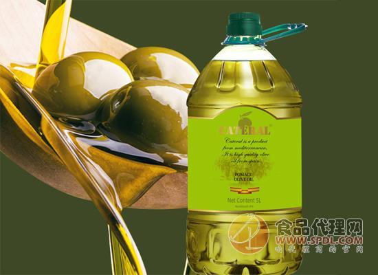凯特兰橄榄油
