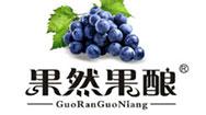 新疆果釀食品有限公司
