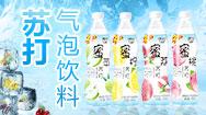 辽宁海城市洁洁乐饮品有限公司