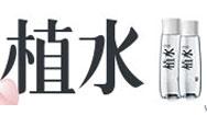 山东芳蕾玫瑰集团9号彩票