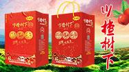 天津冠芳食品科技有限公司
