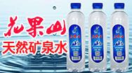 广西贵港市花果山矿泉水公司