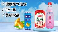 岫岩满族自治县玉福顺饮品有限公司