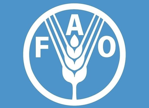 联合国粮农组织:2016年全球谷物供应前景强劲