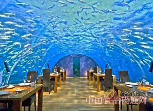 马尔代夫海底餐厅
