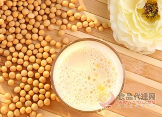 豆奶粉的好处:早起一杯豆奶粉,元气满满一上午