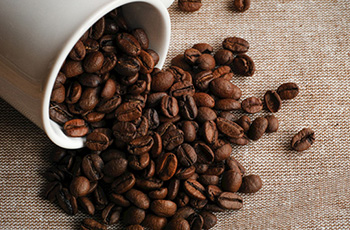 猫屎咖啡豆