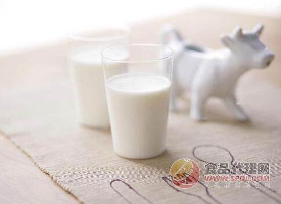 喝纯牛奶有什么好处?不宜多饮冷牛奶!