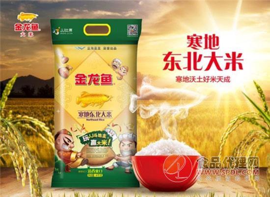 黑土地大米味更香,金龙鱼东北大米价格是多少?
