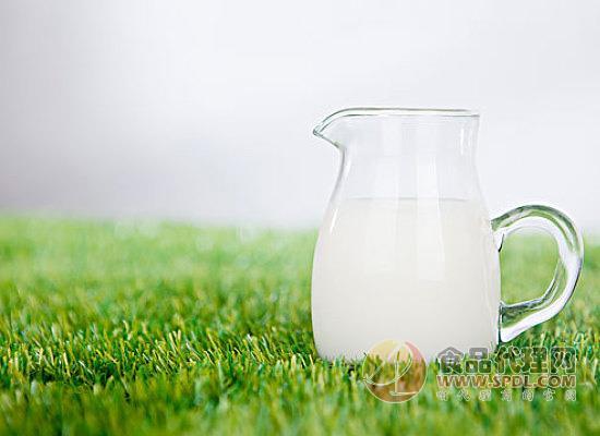 牛奶等几大饮品健康大比拼,你看好谁?