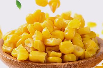 甘竹玉米罐头