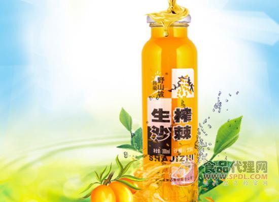 给您原始果味的冲击感,吕梁野山坡沙棘汁价格多少?