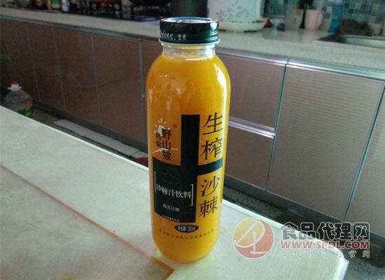 营养藏在瓶子里,小果实大能量!沙棘汁价格是多少?