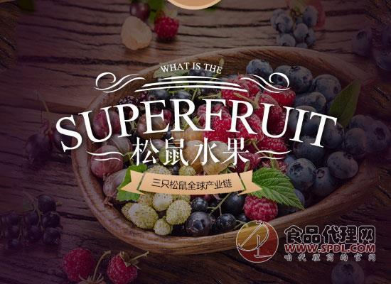 小小红莓果,富含大营养!三只松鼠蔓越莓干价格多少?
