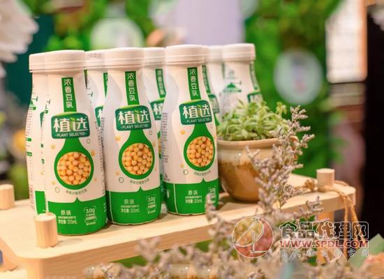 植物蛋白市场又有大动作,伊利全新推出植选畅饮型豆乳!