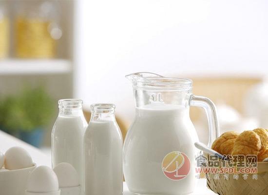 巴氏奶和常温奶的区别有哪些?诸多不同决定了产品不同!