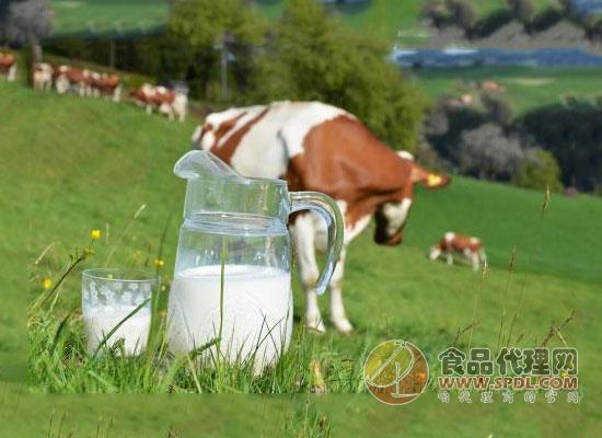 巴氏奶的好处你知道吗?赶紧来了解下吧