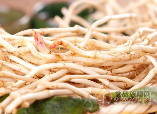 要了解鱼腥草的功效,亦要了解鱼腥草的副作用!