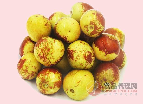 人工种植,健康好水果!城市园丁冬枣价格多少?