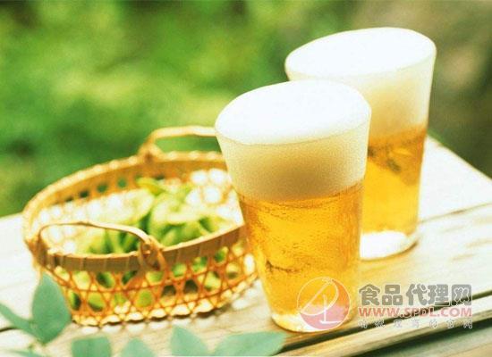 你见识过仙人掌啤酒吗?看看国外的这款高纤维产品吧