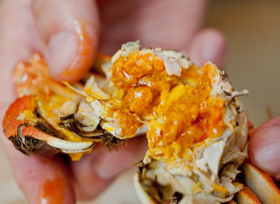 蟹膏和蟹黄的区别有哪些?哪个营养价值更高呢?