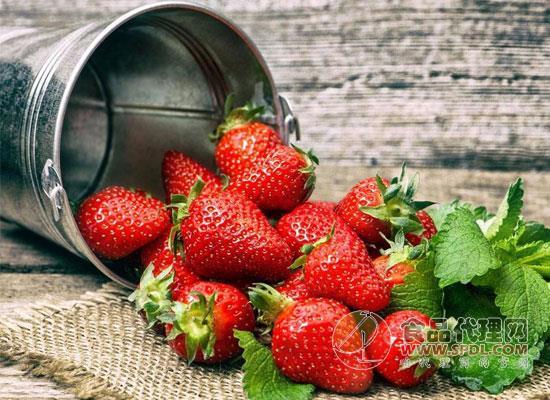 草莓又又叒降价了!哈尔滨草莓跌破每斤10元!