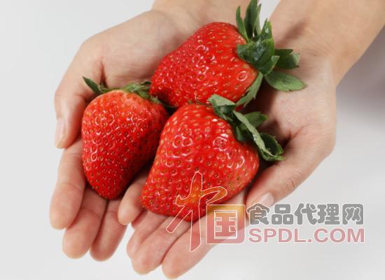 丹东99草莓