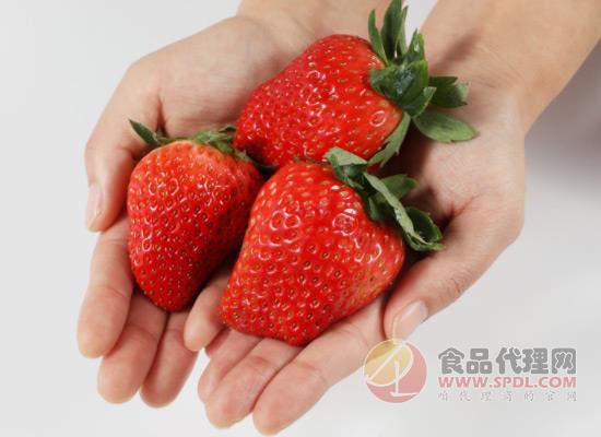 99草莓个大又好吃,丹东99草莓价格多少?