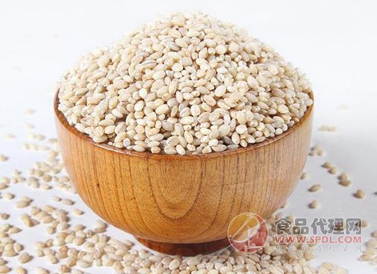小青稞大营养,青穗青稞米多少钱一斤?
