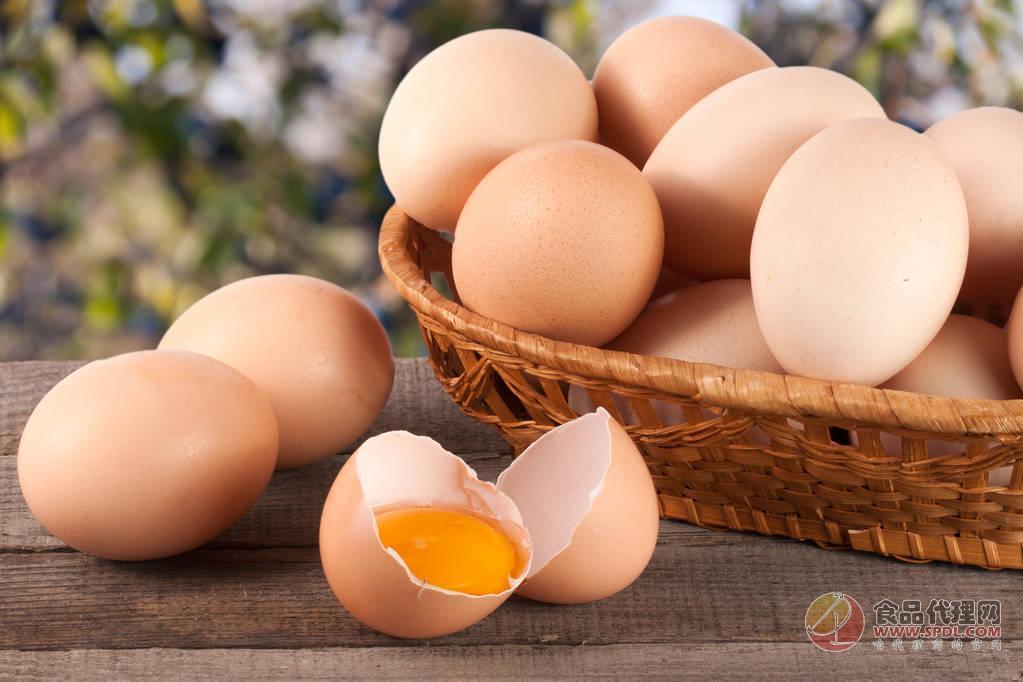 """鸡蛋价格走出""""低谷"""",专家:当顺势出货严控质量"""