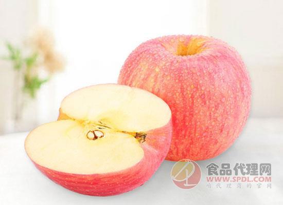 来自北纬37度的执着,京觅烟台红富士苹果价格多少