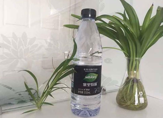 瓶装水市场未来不可估量,新秀入局各显神通