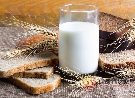 进口牛奶备受国人青睐,但这些牛奶却没有国产奶营养高!