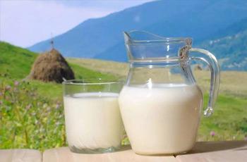 伊利脫脂牛奶