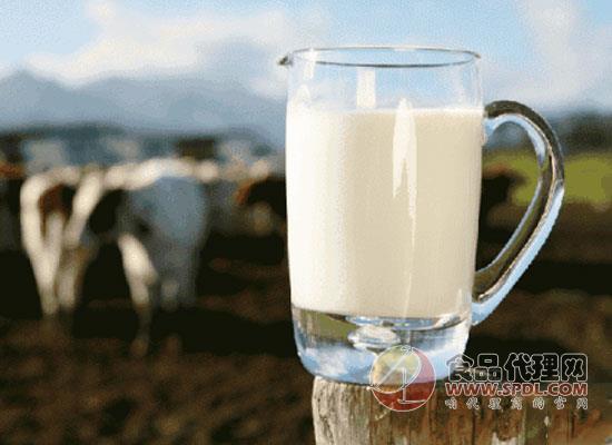 巴氏鲜奶怎么喝?这样饮用才不会浪费它里面的营养