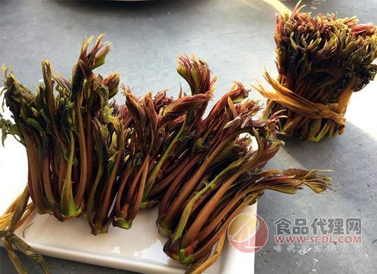 香椿芽的營養價值這么高,看完趕緊去買香椿芽!