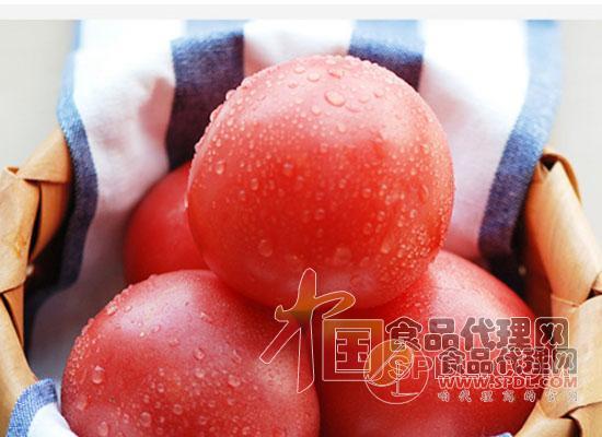 京覓西紅柿