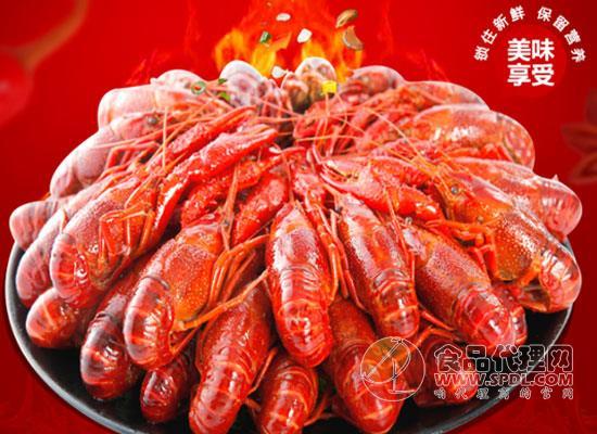 洪湖好水出好蝦,紅功夫十三香小龍蝦價格多少