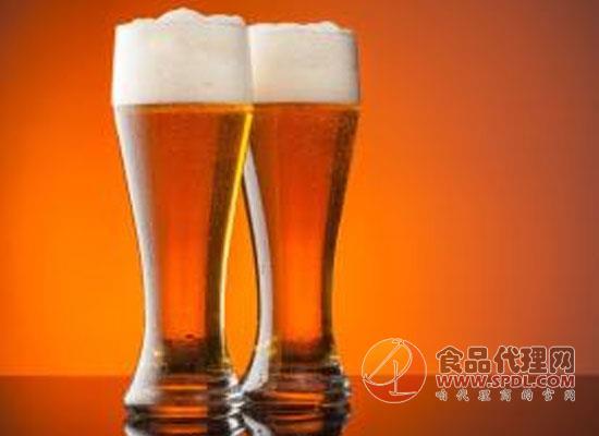 多飲啤酒有助減肥?美國專家的新發現